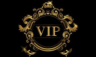 Privatisation VIP