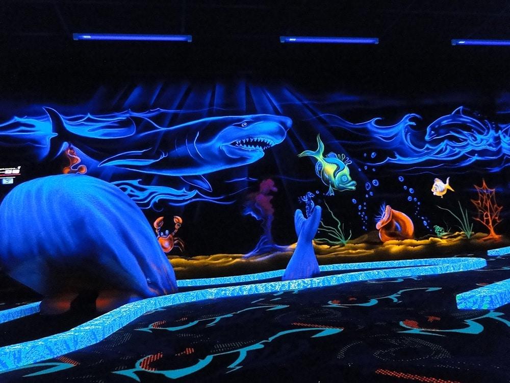 Photo Baleine + fresque requin Goolfy